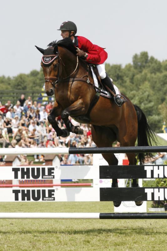 Hest i træning - dresler.com